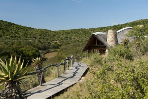 Kwandwe - Great Fish River Lodge - Kwandwe Game Reserve Eastern Cape Sudafrica