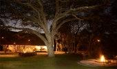 Camelthorn Lodge - Hwange National Park Ngamo Plains Zimbabwe