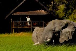 Belmond Khwai River Lodge - Moremi Game Reserve (Private Concession) Khwai River Botswana