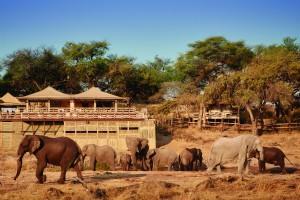 Belmond Savute Elephant Lodge - Chobe National Park Savute Channel Botswana
