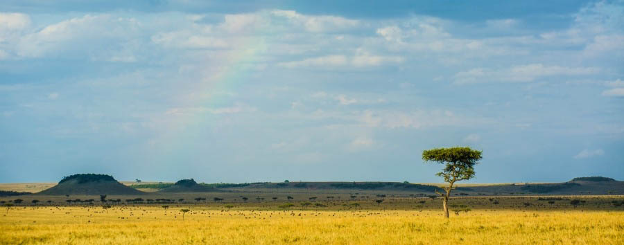 Unique Serengeti Experience - Tanzania Serengeti National Park, Rainbow Above The Plains