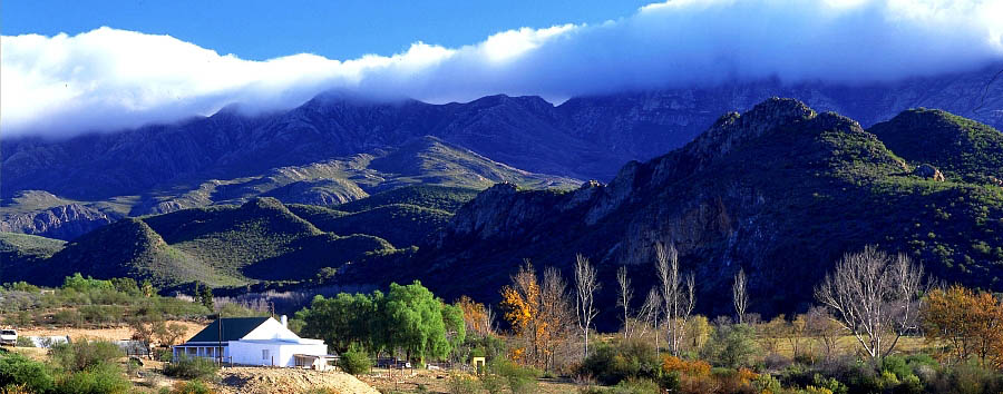 South Africa: The Secret Route 62 - South Africa  Oudtshoorn, farm