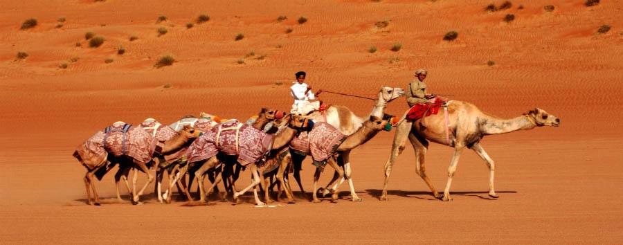 Alla scoperta dell'Oman - Oman Wahiba Sands desert