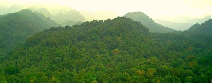 Nature, History & Culture - São Tomé Obo National Park Aerial View