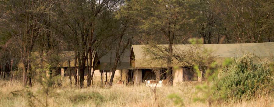 Serian's Serengeti - Serengeti North Camp