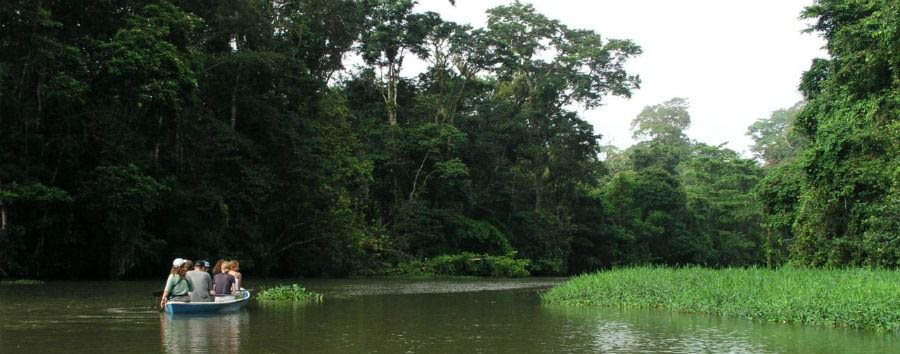 Costa Rica - Tortuguero National Park, Boat Excursion on The Canals