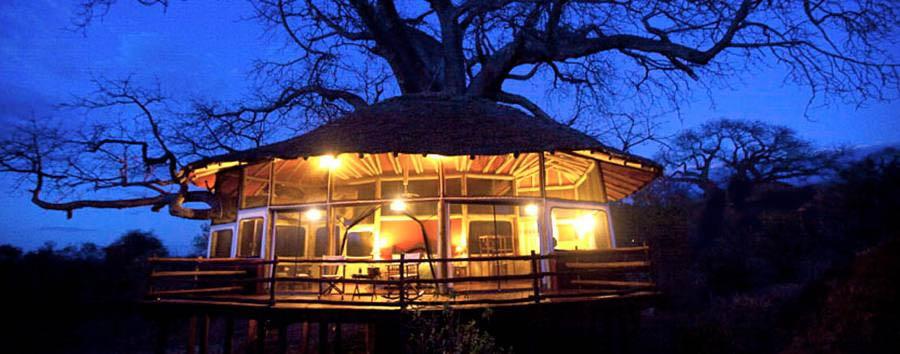Tarangire Treetops - Room exterior