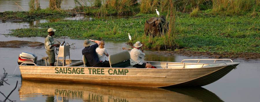 Sausage Tree Camp -
