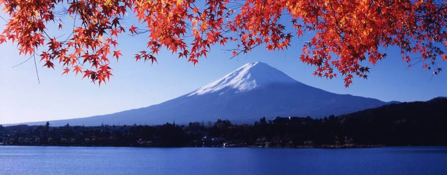 Japan - Mount Fuji in Autumn