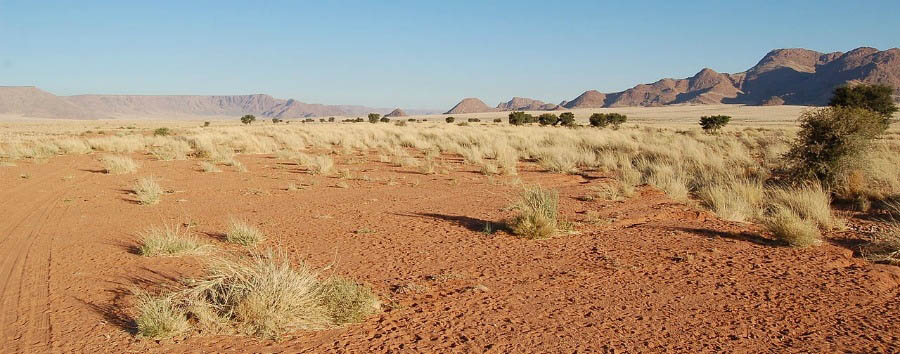Classic Namibia - Namibia Namib-Naukluft National Park © Joachim Huber