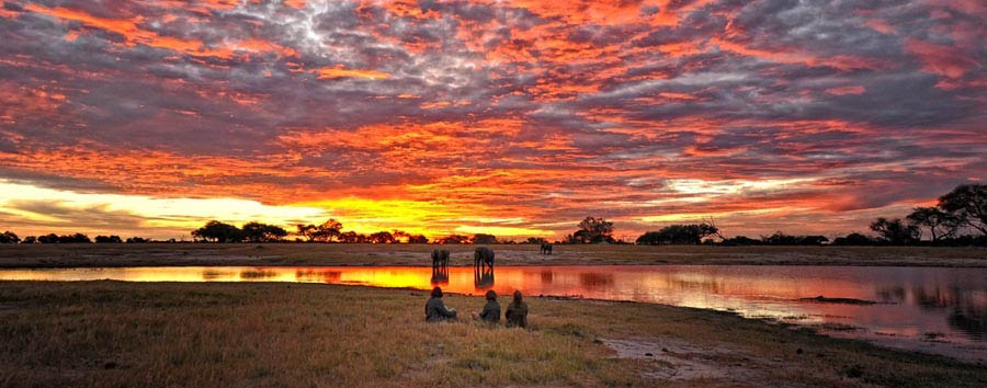Stupefacente Zimbabwe - Zimbabwe Amazing sunset in Hwange National Park