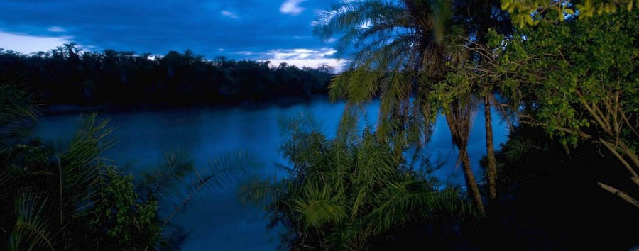 Wonders of Saadani - Tanzania Saadani National Park and Wami River by night