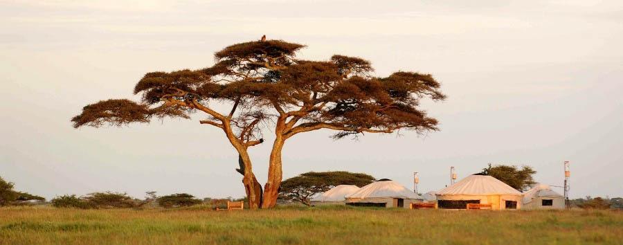 Nduara Loliondo - Main Area