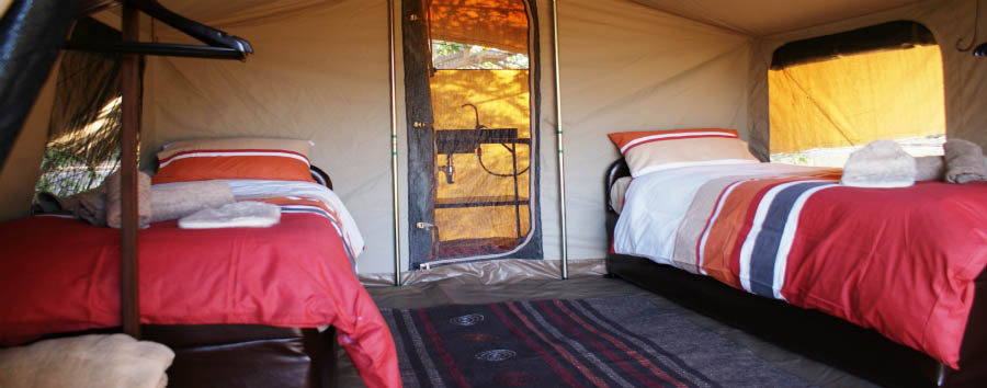 Khawai Bedouin Camp - Twin bed Camp
