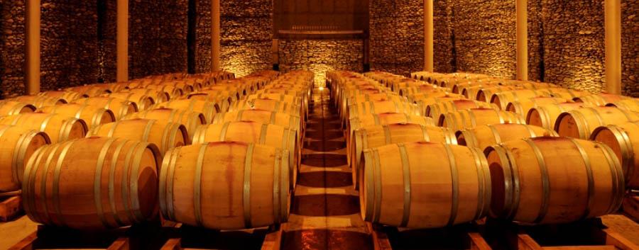 Casona Matetic - Matetic's wine cellar