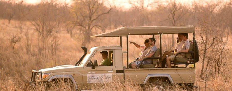 Vintage Botswana - Botswana Wildtracks Safaris Eco Lodge, Game Drive