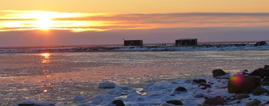 Migrazioni artiche: gli orsi polari - Arctic Fly-in polar bear cabins exterior view at sunset