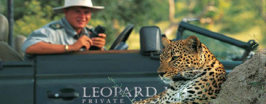 Leopard Mountain Game Lodge - Wildlife