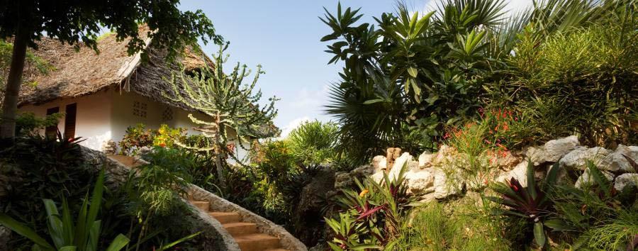 Zanzibar, Matemwe Lodge - Zanzibar Matemwe Lodge tropical garden