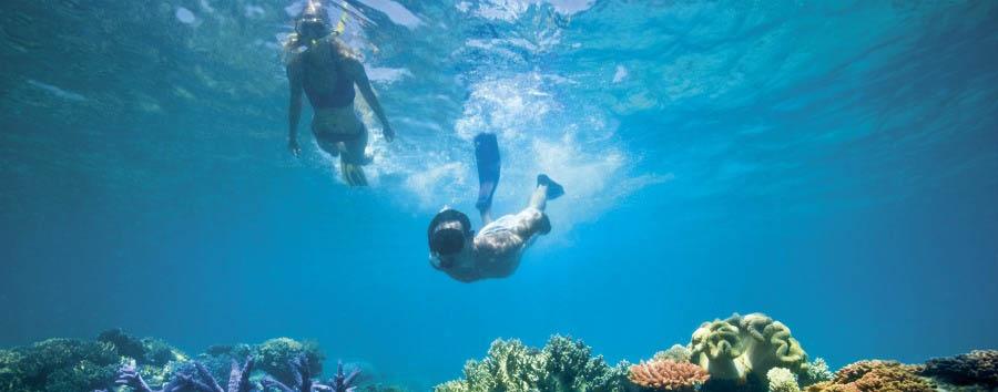 Unique Lizard Island Experience - Australia Lizard Island, Snorkeling © Luxury Lodges of Australia