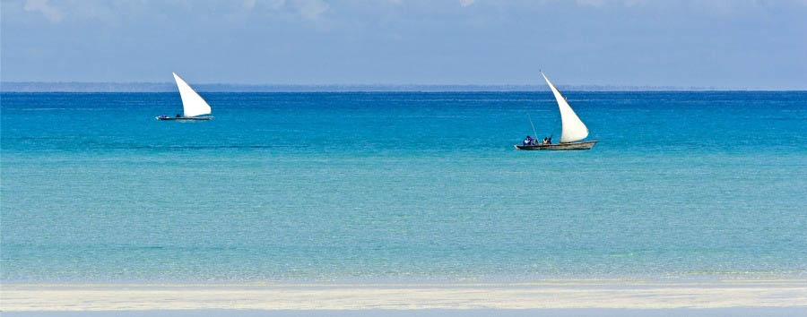 Mozambique - Dhow Sailing on the Horizon