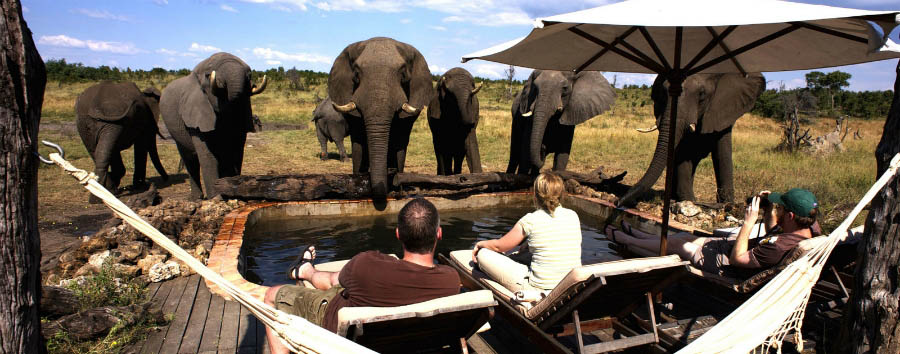 Somalisa Camp - Relax with the elephants