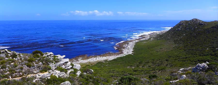 South Africa Adventure - South Africa Cape Peninsula