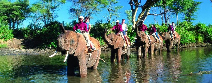 Zimbabwe, Victoria Falls à la carte - Zimbabwe Elephant back ride