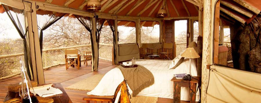 Tarangire Treetops - View from the room