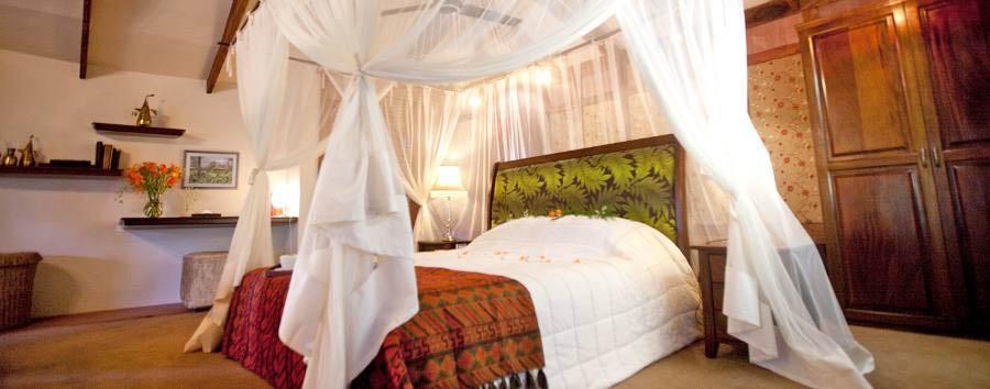 Arusha Coffee Lodge - Plantation suite