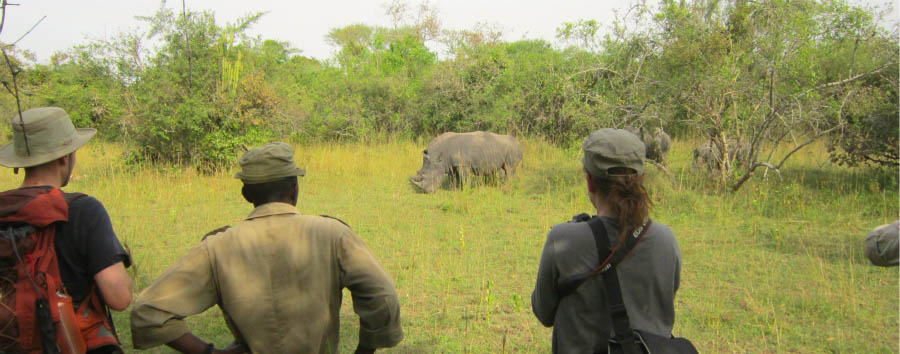 Uganda - Ziwa Rhino Sanctuary, Walking safari