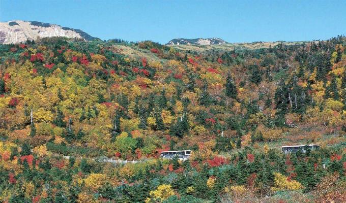 Autumn Landscape along Tateyama - Kurobe Alpine Route - Japan