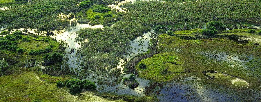 Vintage Botswana - Botswana Okavango Delta, Aerial View