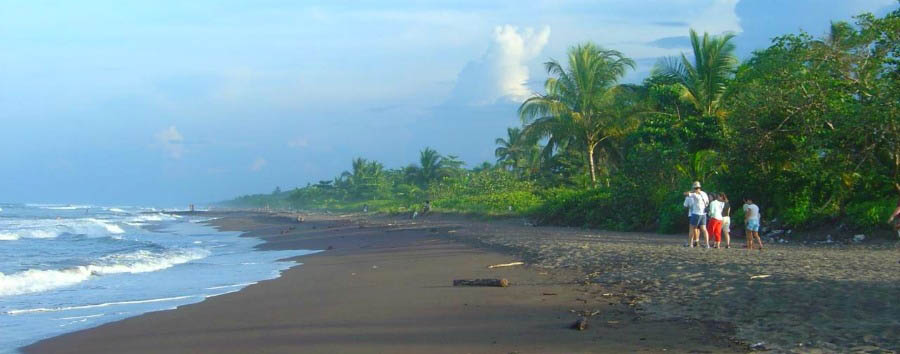 Unexpected Costa Rica & Mexico - Costa Rica Tortuguero National Park, Beach View