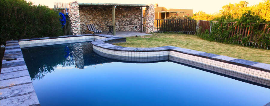 Duinepos Chalets - Swimming pool