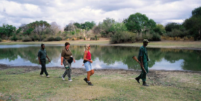 Rufiji River Camp - Walking safari near Rufiji River
