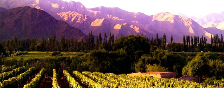 Classic Salta & Jujuy  - Argentina Ruta del Vino