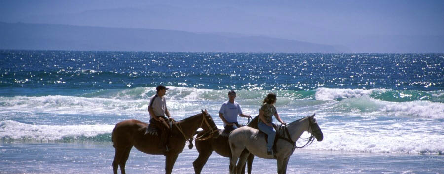 South Africa - Kurland, Horse Riding on the Beach