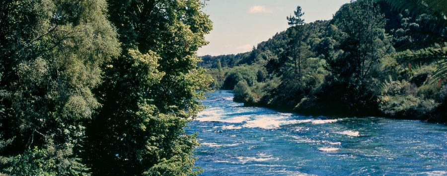 New Zealand Escape - New Zealand Stunning View of the Waikato River