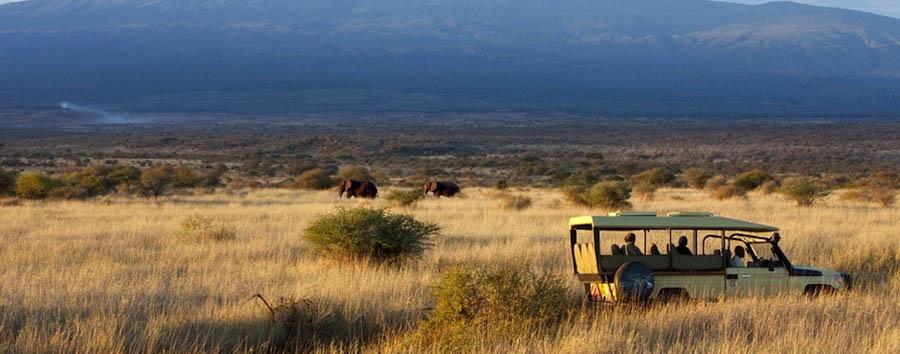 Kenya, la mia Africa in volo - Kenya Game drive