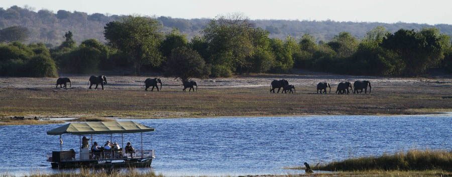 Chobe+Savanna+Lodge+-+Game+Viewing+on+the+Chobe+River