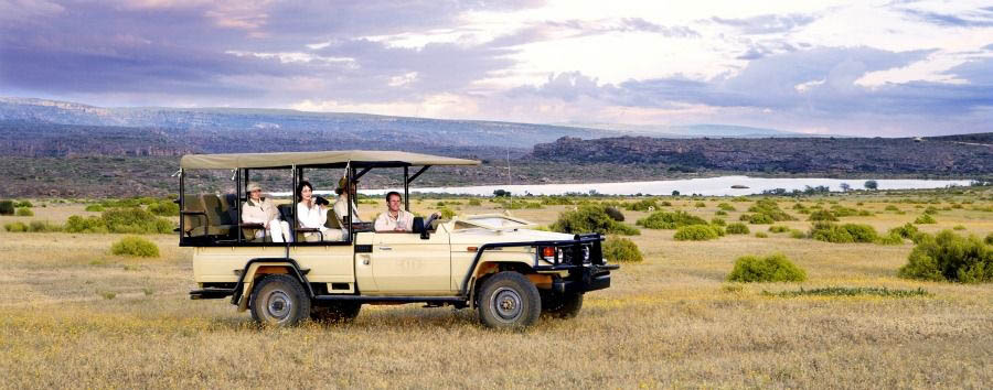 Le gemme del Sudafrica - South Africa Bushmans Kloof Wilderness Reserve, Game Drive
