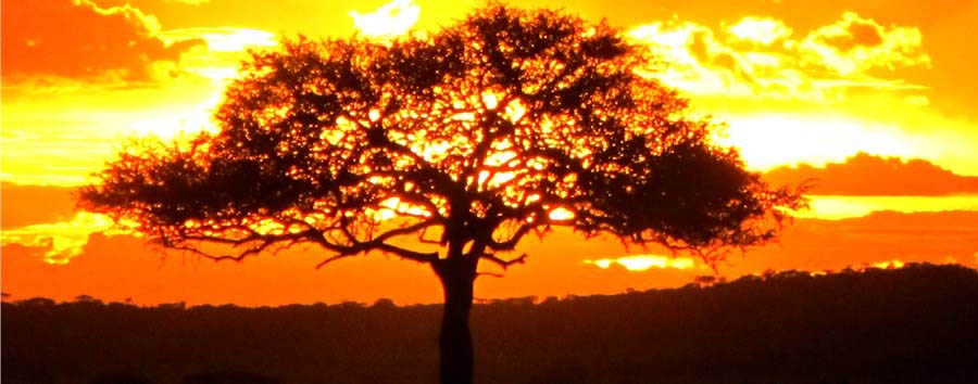 Discovering Tanzania - Tanzania Sunset in Serengeti National Park