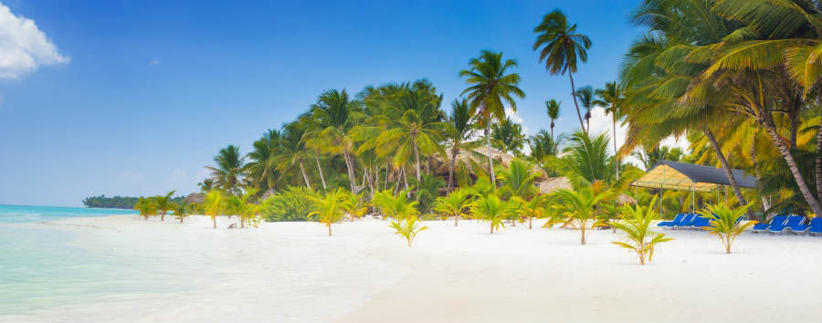 Alla scoperta della Repubblica Dominicana - Dominican Republic Paradise on earth, scenery of tropical beach on caribbean island Saona  ©  Petr Kopka/Shutterstock