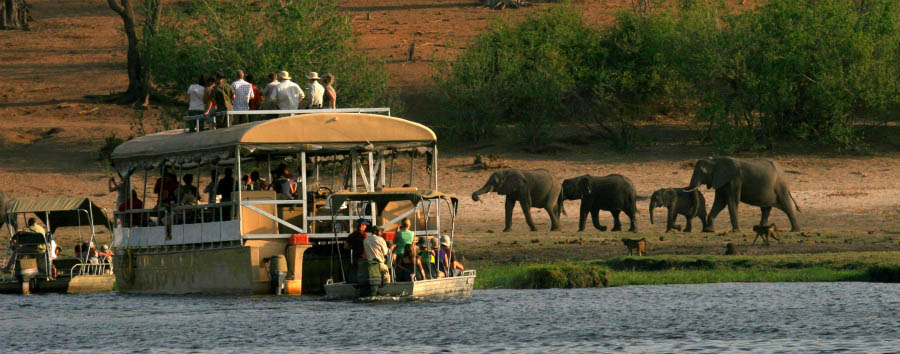 Triangolo australe - Botswana Boat trip on the Chobe River