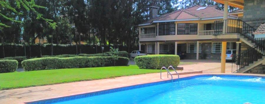 Margarita House - Pool area