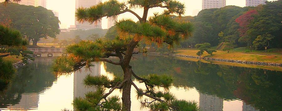 Giappone: tradizioni e nostalgia - Japan Tokyo - View of the Hamarikyu Garden