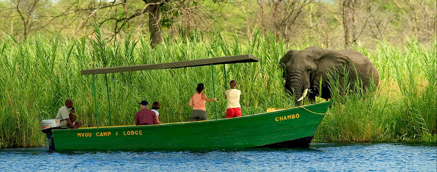 Sud Malawi: safari e foreste - Malawi Boat safari in the Liwonde National Park