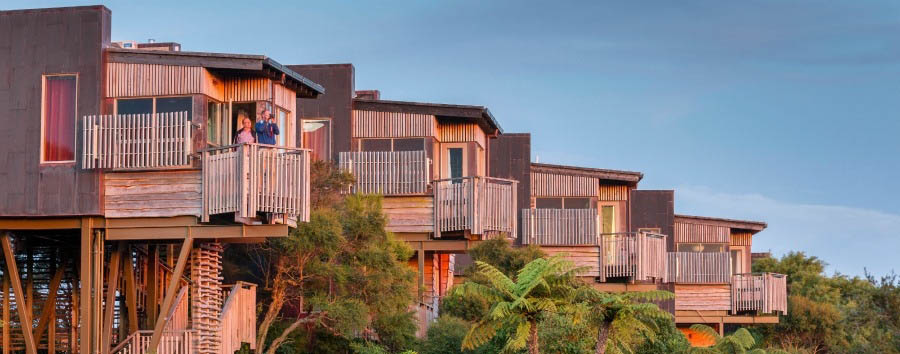 New Zealand Gourmet Escape - New Zealand Hapuku Lodge & Tree Houses, Tree Houses Exterior