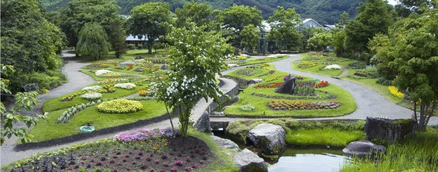 Le scimmie delle nevi - Japan Obuse, The Floral Garden